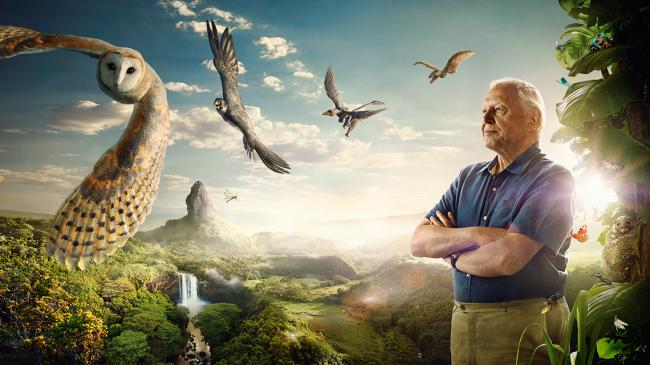 David-Attenborough-Conquest-of-The-Skies-Keyart-16x9-small