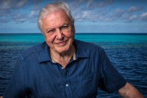 David-Attenborough-on-the-Great-Barrier-Reef-9-c-Atlantic-Productions1